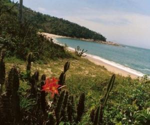 010d5-Praia-da-Lagoa