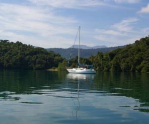 42425-Ilha-da-Cotia