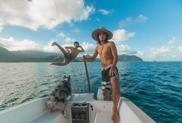 navegar com cachorro